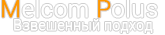 Разработка и продажа электронного весового оборудования